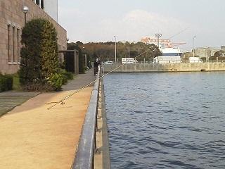 アイクル(横須賀市) 神奈川発!釣りチュー海釣り場情報
